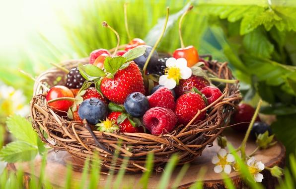Картинка листья, цветы, ягоды, малина, корзина, черника, клубника, вишни, ежевика
