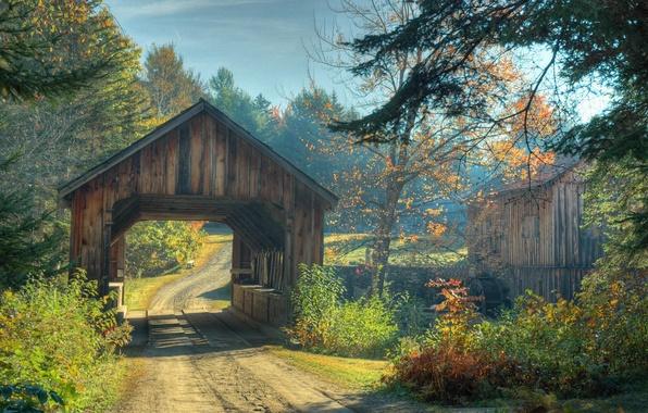 Картинка дорога, осень, лес, деревья, мост, Природа