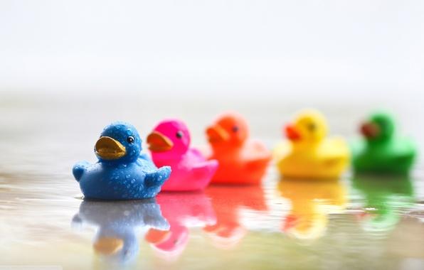 Картинка вода, оранжевый, синий, желтый, зеленый, отражение, река, розовый, голубой, настроения, игрушки, цветные, утки, радуга, красочные, …
