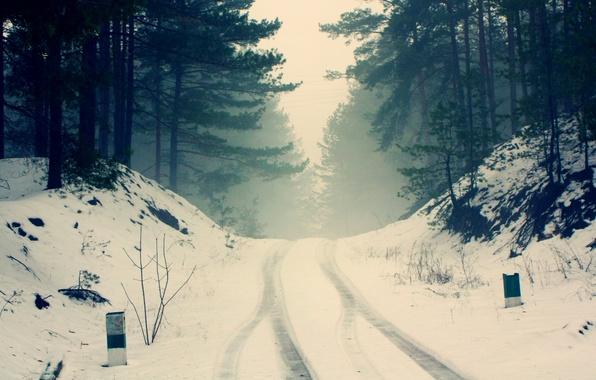 Картинка зима, дорога, лес, снег, деревья, ветки, природа, туман, тишина, мороз, дымка, сосны, силуэты, холодно, следы …