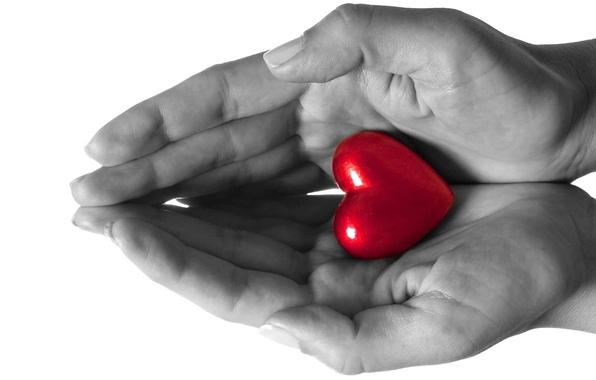 Картинка любовь, сердце, руки, чувство
