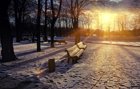 Картинка закат, город, парк, весна, скамья