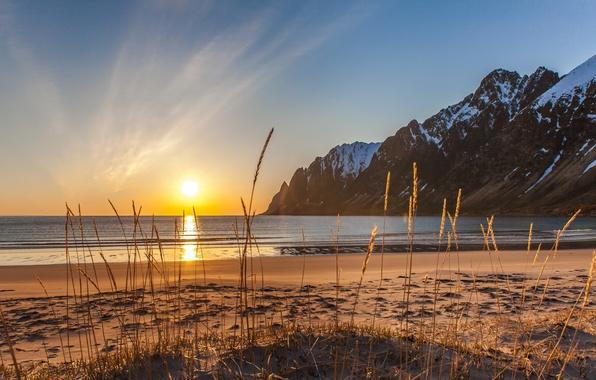 Картинка зима, песок, море, пляж, трава, снег, горы, Норвегия, Сенья, Эрсфьордботн