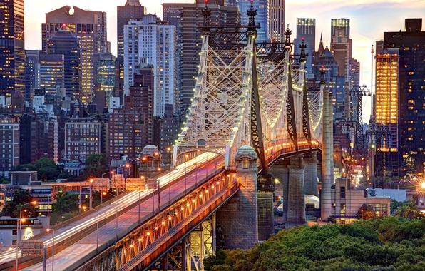 Картинка дорога, деревья, город, огни, здания, дома, Нью-Йорк, небоскребы, вечер, освещение, фонари, USA, США, Манхэттен, New …