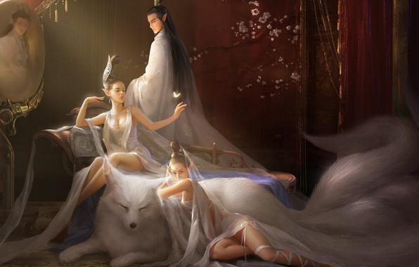 Картинка девушки, комната, животное, бабочка, зеркало, арт, хвост, мужчина, фэнтази, лисица