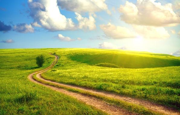 Картинка дорога, лето, небо, трава, солнце, облака, пейзаж, просёлочная, village, густая, Sunshine day