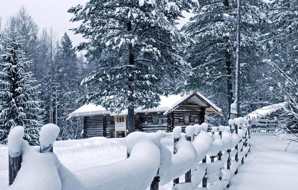 Картинка зима, снег, дом, забор, сугробы, сосны, погода