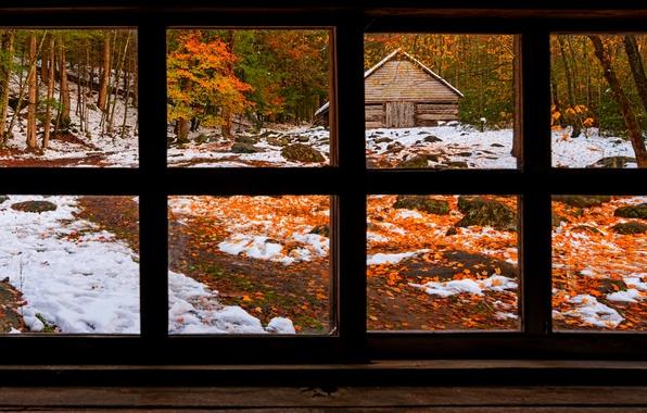 Картинка зима, дорога, осень, лес, трава, листья, снег, деревья, природа, дом, парк, colors, colorful, окно, house, …