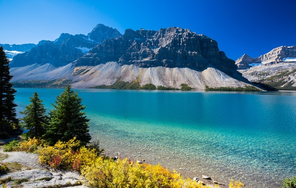 Bow lake альберта канада горы деревья