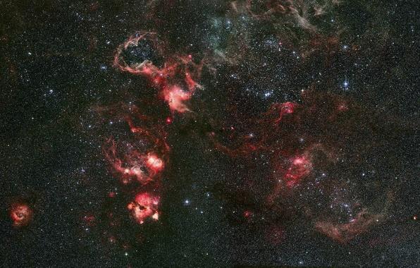 Картинка туманность, созвездие, Золотая Рыба, Тарантул, NGC 2070