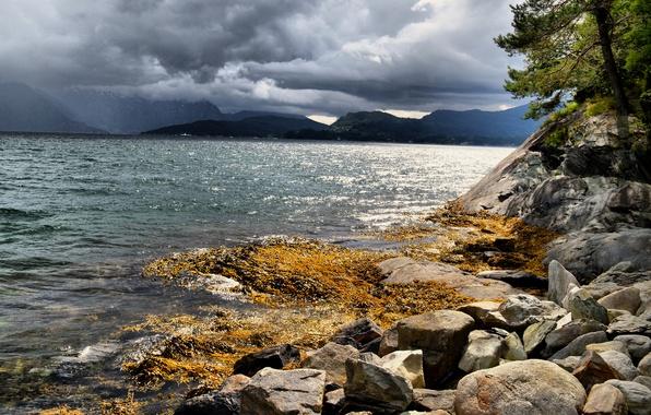 Картинка море, облака, камни, побережье, Норвегия, Hardangerfjorden