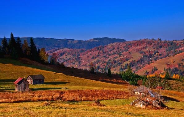 Картинка осень, небо, деревья, горы, дом, склон, Украина, хата, Карпаты