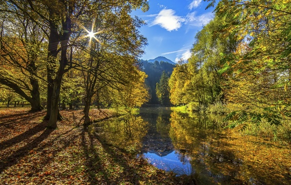 Картинка осень, лес, небо, вода, солнце, облака, свет, горы, река, листва, Nature, Tree, Water, Autumn, Colors, …