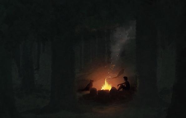 Обои арт, ночь, лес, мальчик, собака, костёр картинки на рабочий ...