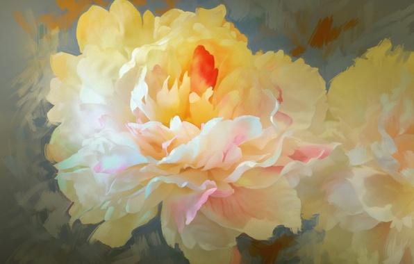 Картинка цветы, лепестки, пион