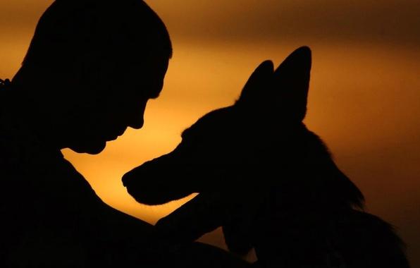 Картинки по запросу картинки человек и собака