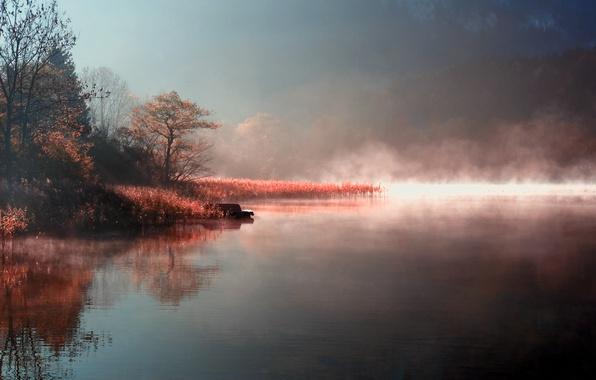 Картинка осень, природа, туман, озеро, река, берег, утро, пар