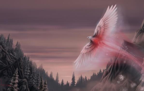 Картинка лес, птица, крылья, фэнтези, арт, fantasy, art, Oliverford, Snow phoenix, снежный феникс