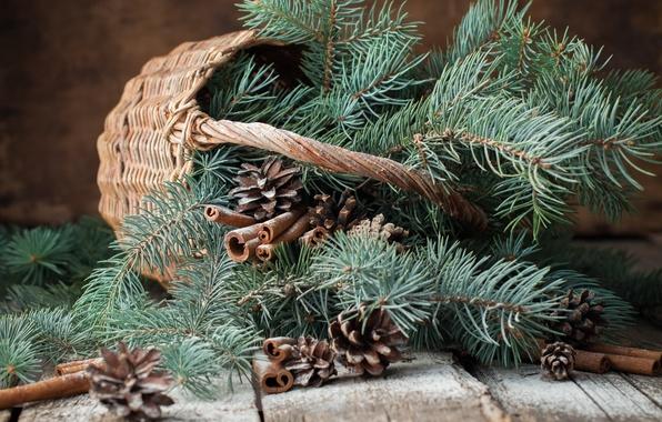 Картинка ветки, корзина, елка, Новый Год, Рождество, шишки