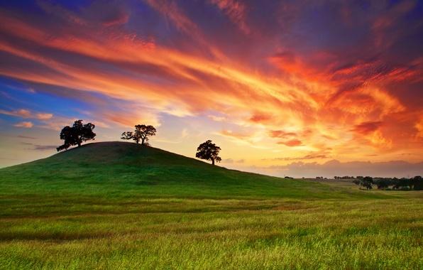 Картинка поле, небо, трава, облака, деревья, закат, весна, Калифорния, Май, США