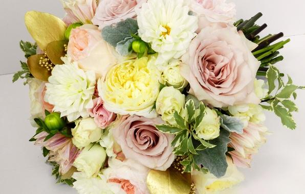 Картинка фото, Цветы, Букет, Розы, Лютик, Георгины