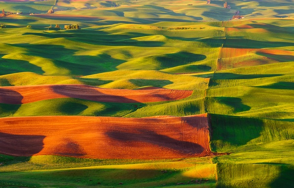 Картинка природа, холмы, поля, долина, США, ковры, Steptoe Butte State Park