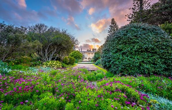 Картинка природа, здание, сад, Sydney, Government House, the Royal Botanic Gardens