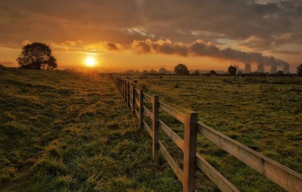 Картинка небо, трава, солнце, облака, деревья, закат, трубы, дым, забор, вечер, коровы, ограждение, Загон