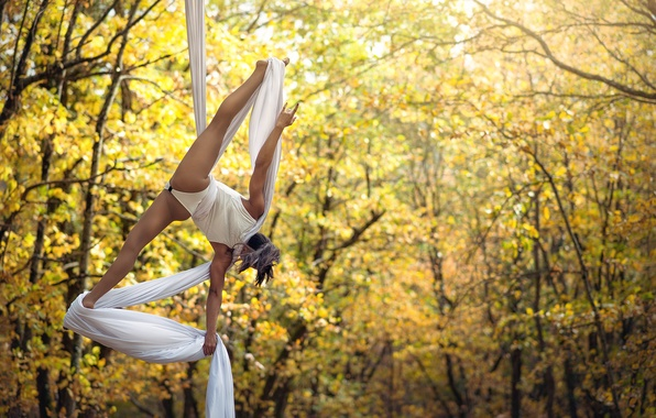 Картинка танец, акробатика, Chris Silya, не стриптиз