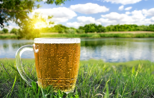 Картинка зелень, лето, трава, солнце, деревья, пиво, кружка, речка