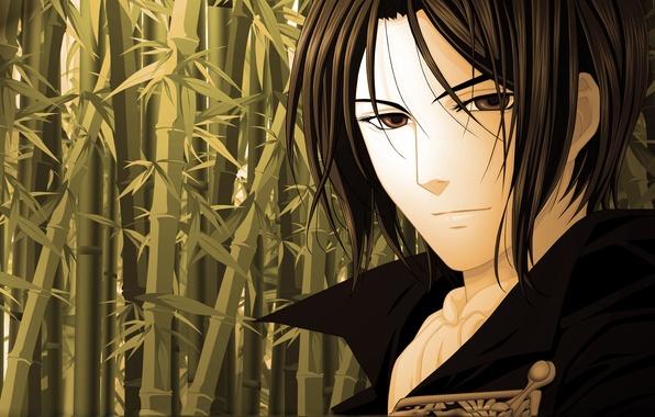Картинка глаза, взгляд, бамбук, арт, Аниме, парень, Hakuouki, демоны бледной сакуры, Shinsengumi Kitan, Окито