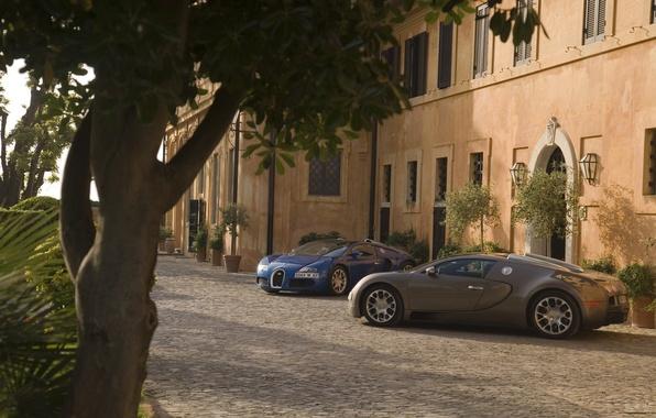 Картинка Дерево, Дом, Свет, Bugatti Veyron