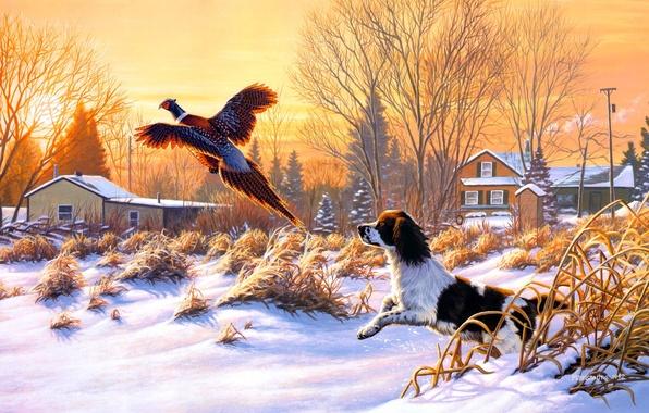 Картинка зима, снег, природа, восход, птица, собака, живопись, искусство, летать, Frank Mittelstadt, Getting Up, охотничья