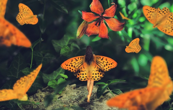 Картинка девушка, бабочки, лилия, крылья, Wonderland journey, Maria Mazuch