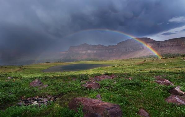Картинка небо, трава, облака, цветы, горы, тучи, озеро, камни, радуга