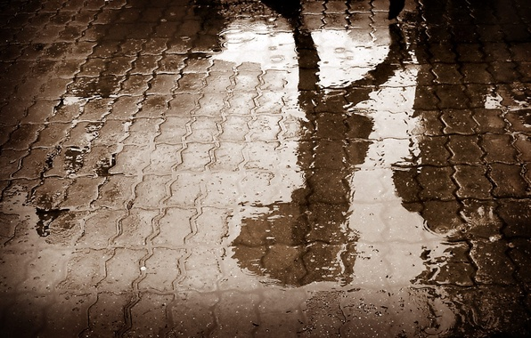Картинка дорога, асфальт, вода, отражение, дождь, тень