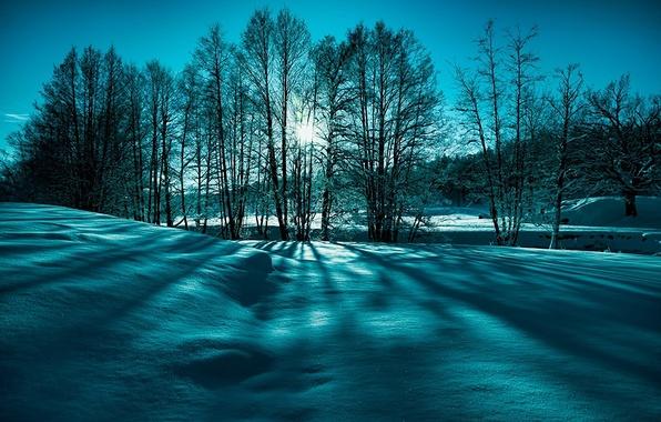 Обои картинки фото природа зима снег