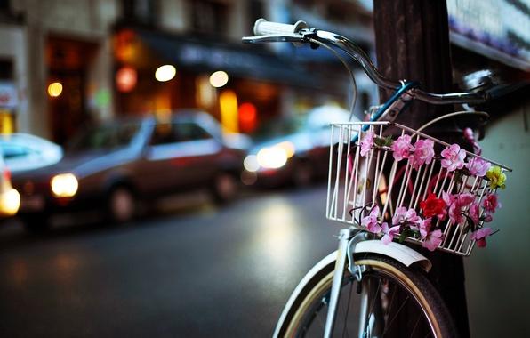 Картинка дорога, цветы, машины, велосипед, город, огни, корзина, столб, вечер, боке