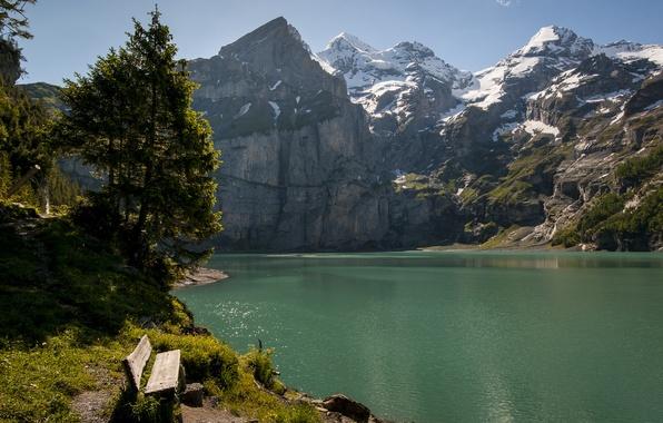 Картинка деревья, горы, скамейка, озеро, Швейцария, Switzerland