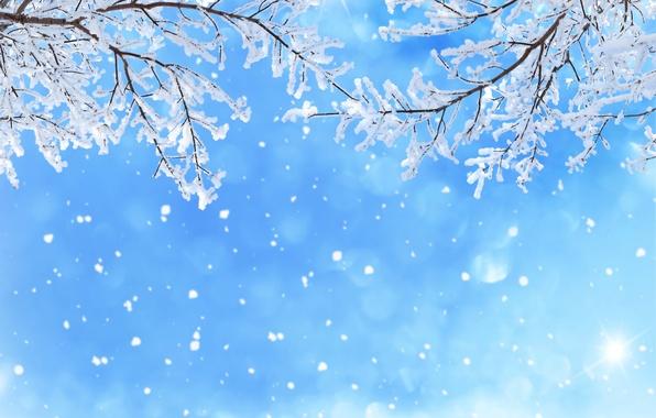 Картинка зима, небо, снег, снежинки, ветки, блики, голубое