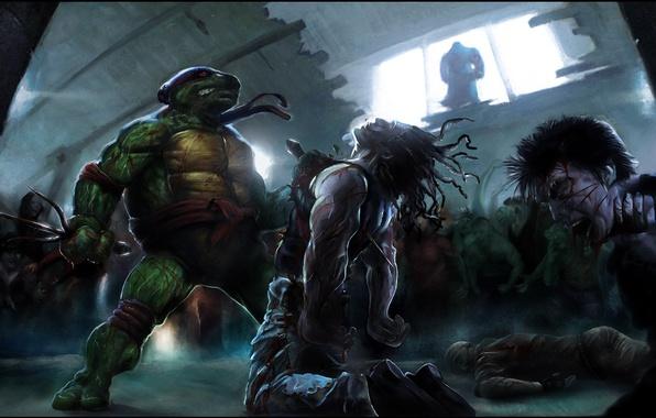 Обои картинки фото черепашки-ниндзя, ninja turtles, рафаэль