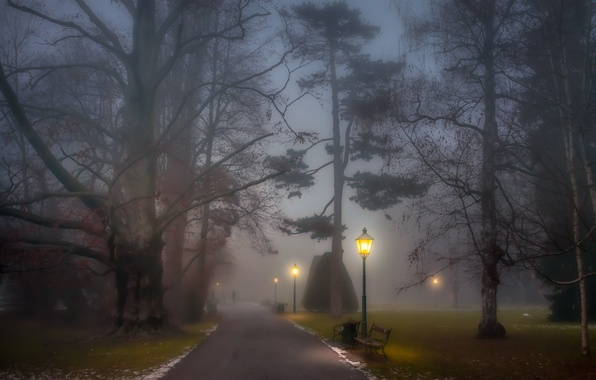 Картинка trees, park, people, fog, path, foggy, benches, lamp posts