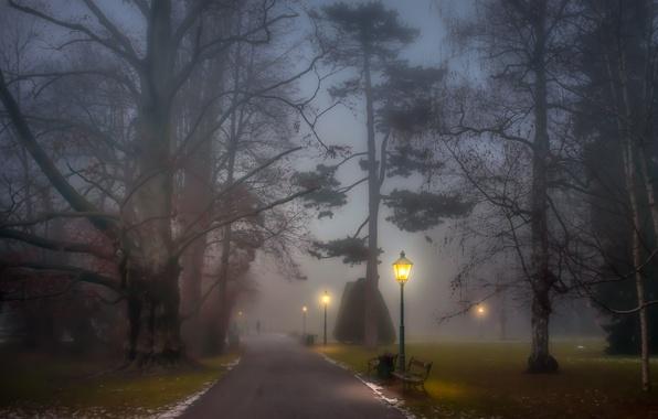 Картинка trees, park, people, fog, path, foggy, benches, lamp posts