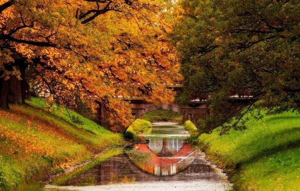 Картинка осень, лес, небо, листья, вода, деревья, горы, природа, парк, река, colors, colorful, forest, trees, water, …