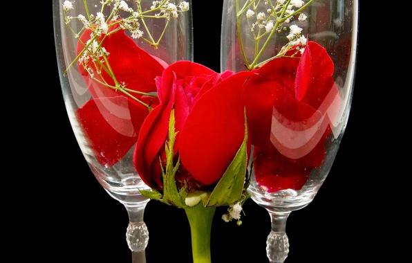 Картинка цветок, цветы, природа, бокал, роза, лепестки, бутон, бокалы, красная, красные розы