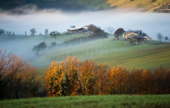 Картинка поле, деревья, горы, туман, дом, утро, Италия, провинция Мачерата