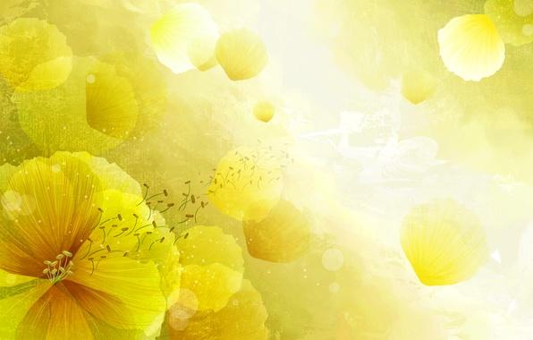 Картинка цветок, свет, природа, вектор, лепестки