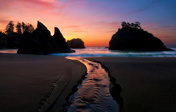 Картинка песок, море, волны, небо, пена, вода, деревья, брызги, природа, скала, камни, дерево, настроение, океан, скалы, …