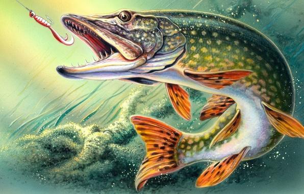 Картинка рисунок, рыбалка, рыба, арт, крючок, онлайн, щука, Fantastic Fishing, бесплатный, виртуальный, симулятор рыбной ловли с …