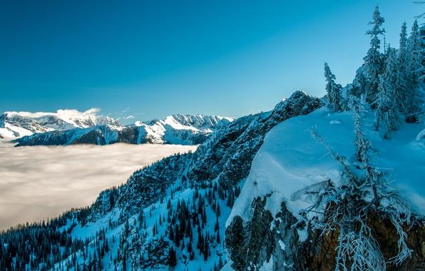 Картинка зима, небо, снег, деревья, горы, туман